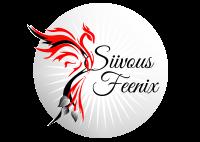 Siivous Feenix